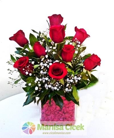 Kare Cam 9 Gül - Manisa Çiçek