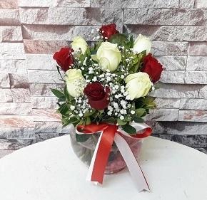 Kýrmýzý Beyaz Gül - Manisa Çiçekçi