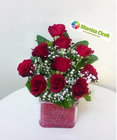 10 Adet Gül kare vazoda Manisa Çiçek