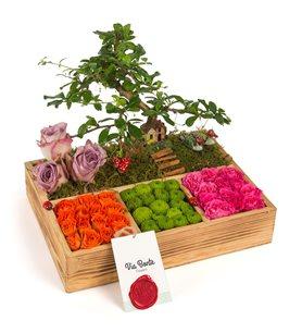 Ahþap Bahçe Bonsai ve Güller