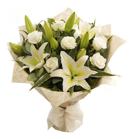 Beyaz Melek - Manisa Çiçek