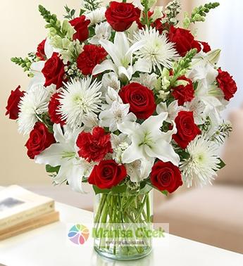 Beyaz Kýrmýzý çiçekler vazoda Muhteþem Güzellik
